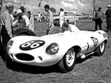 1955 Jaguar D-Type  - $XKD 520 as seen in Frank Gardner's ownership.