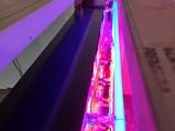 Mobilgas Custom-Made Neon Tin Sign - $
