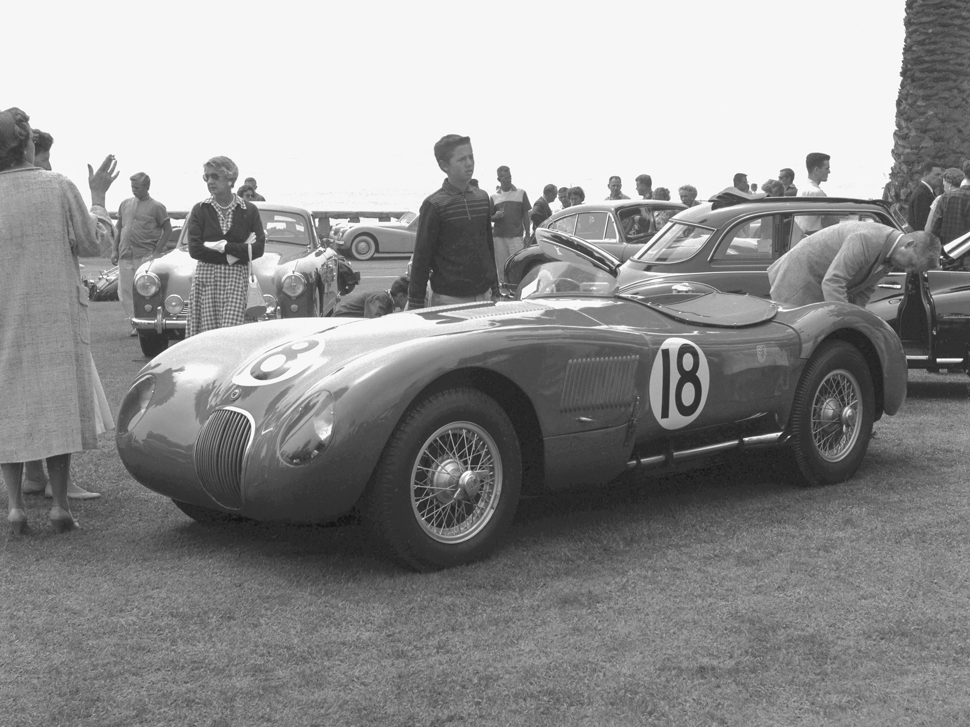 XKC 007 takes a break from racing at the Santa Barbara Concours d'Elegance in 1956.